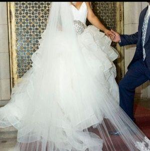 Beautiful Vera Wang Wedding Dress and Veil